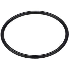 Rotor INpower O-Ring, black
